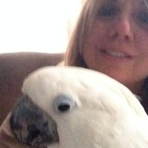 Housekeeper Provider Deborah Yadimarco's Profile Picture