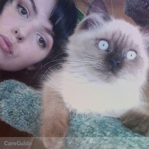 Pet Care Provider Taryn P's Profile Picture