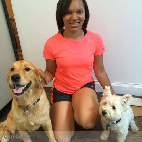 Pet Care Provider Brie Robertson's Profile Picture