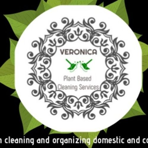 Most Seasoned Home Cleaning Provider in Astoria