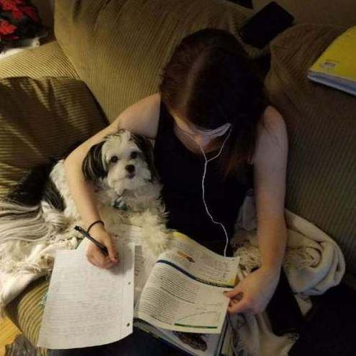 Pet Care Provider Danielle D's Profile Picture