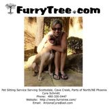 Professional, Trusted, Punctual, Responsible, & Loving Pet Sitter