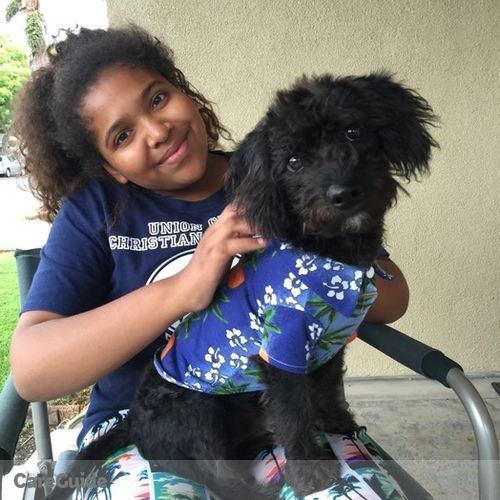 Pet Care Provider Giana Udoh's Profile Picture