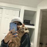 Pet Sitter/Walker/Feeder/Etc