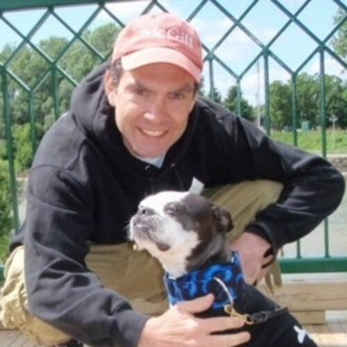 Dog & Cat Lover Available for Dog Walking, Pet Sitting, &/or Feeding in London, ON