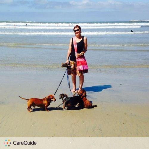 Pet Care Provider Blake Daniel's Profile Picture