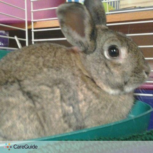 Pet Care Provider Katrina Twardokus's Profile Picture