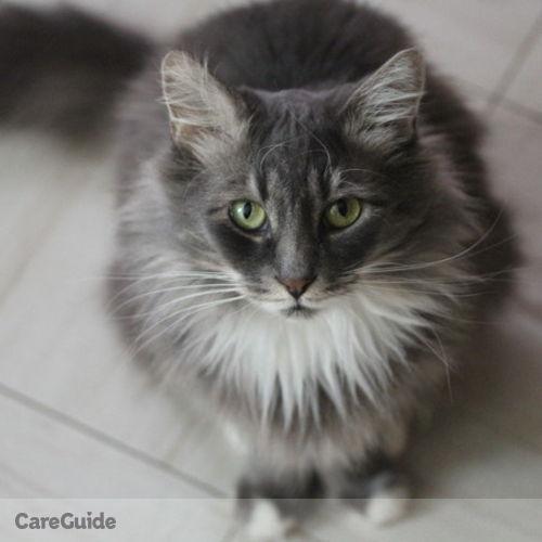 Pet Care Job Manon L's Profile Picture