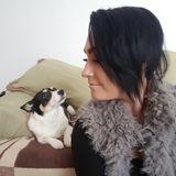 Dog Walker, Pet Sitter in Newmarket