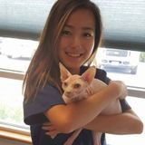 Available: Fun and Experienced Pet Sitter for Your Best Friend in Walnut Creek, California