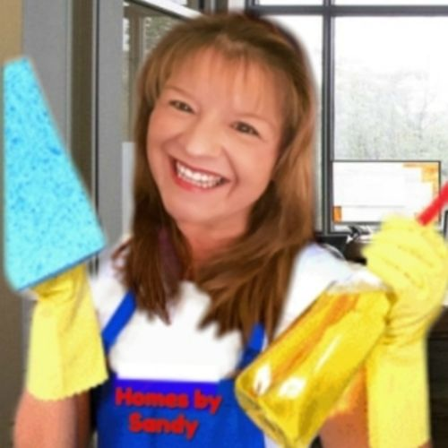 Housekeeper Provider Sandy W's Profile Picture