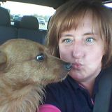 Interviewing For Myrtle Beach Dog Walker Jobs, animal sitting,