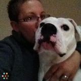 Dog Walker, Pet Sitter, Kennel in Pembroke