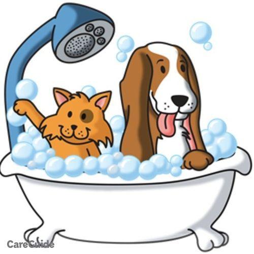 Pet Care Provider Harry Bryant's Profile Picture