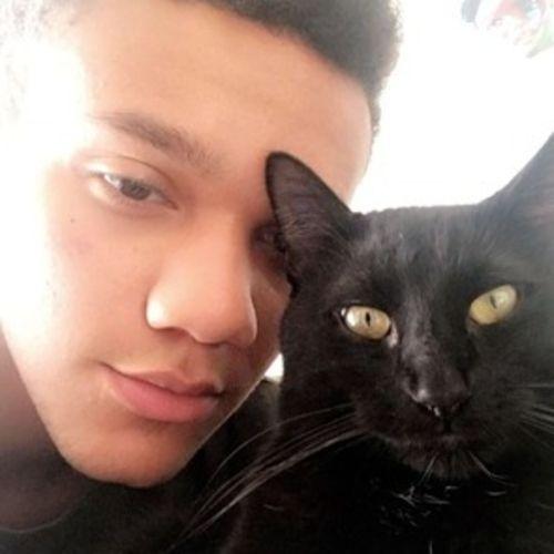 Pet Care Provider Deaven M's Profile Picture
