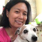 Experienced Dog Walker/Sitter in Irvine