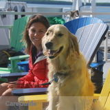 Energetic and Experienced Pet Sitter