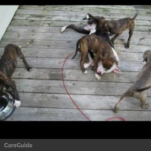 Pet Care Provider Brian Lemon's Profile Picture