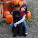 Pet Sitting Offered in Lynnwood, Mill Creek & Bothell