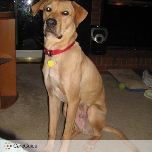 Pet Care Provider Terilynn H's Profile Picture
