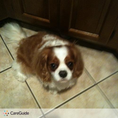 Pet Care Provider Brook D's Profile Picture
