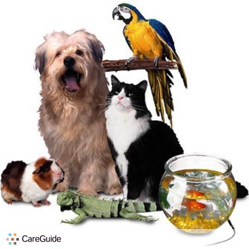 Pet Care Provider Rodrigo G's Profile Picture