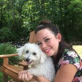 Looking For a Dog Sitter Job in Asheville, North Carolina