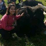 Searching for Munster Animal Lover Jobs