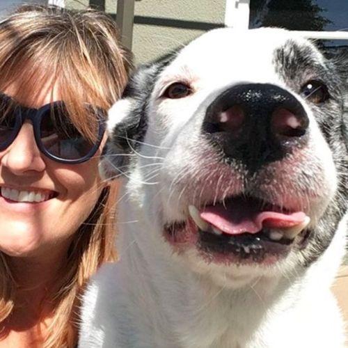 Pet Care Provider Karen S Gallery Image 1