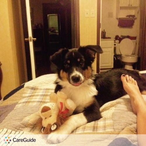 Pet Care Job Mackenzie Ralph's Profile Picture