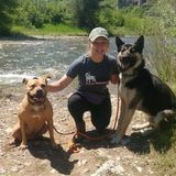I am an experienced animal caretaker seeking animal care and pet sitting jobs in Great Falls, MT or surrounding areas.
