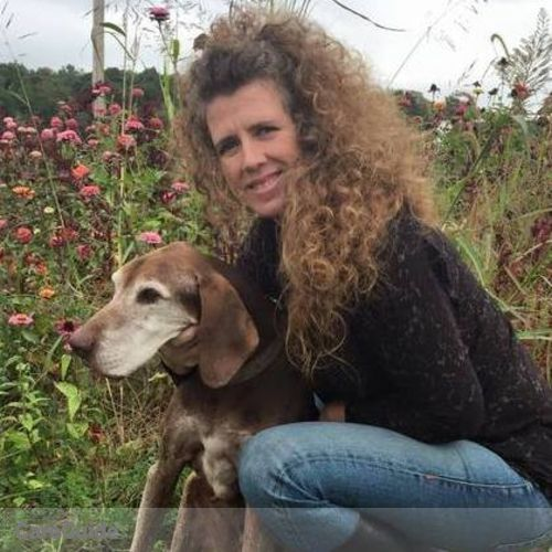 House Sitter Provider Donna v's Profile Picture