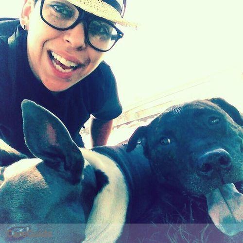 Pet Care Provider Drea Massaro's Profile Picture