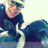 Dog Walker, Pet Sitter in Honolulu