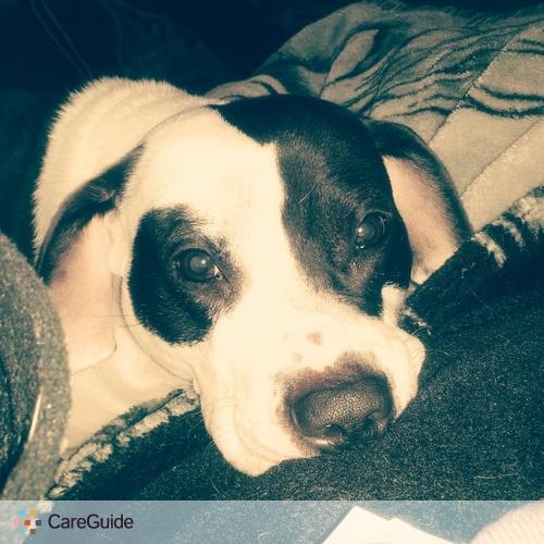 Pet Care Provider Rebecca Bailey's Profile Picture