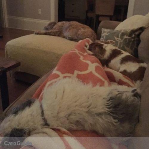 Pet Care Provider Chelsea Fisher's Profile Picture