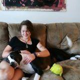 Responsible and Reliable Pet Sitter in Santa Cruz, California