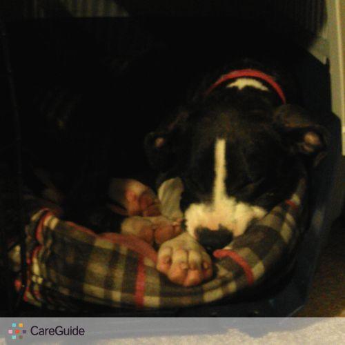 Pet Care Provider Rhonda Bra's Profile Picture