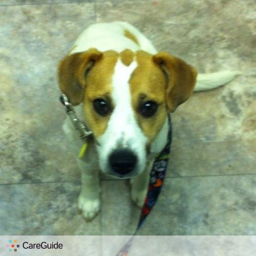 Pet Care Provider Lindsay Lundstrom's Profile Picture