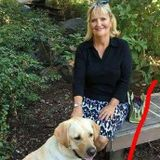Oregon City Dog Trainer Looking For Job Opportunities in Oregon