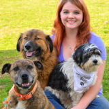 Farm & Companion animal care (Spring Hill,TN-Florence,AL)