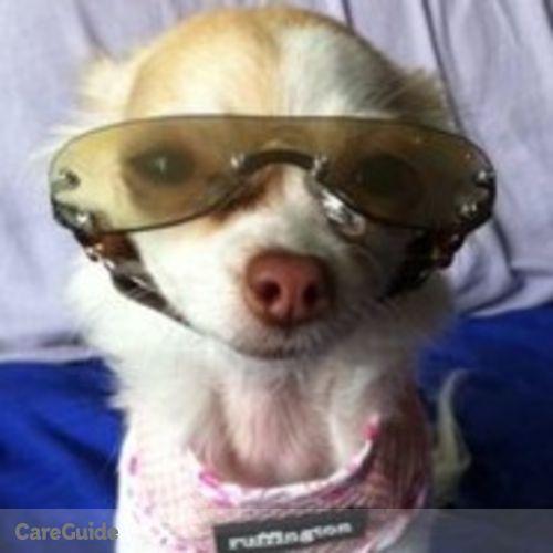 Pet Care Provider Jollean S's Profile Picture