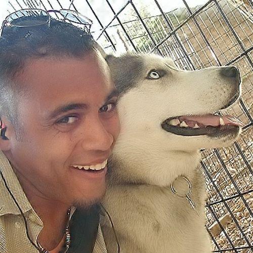 Pet Care Provider David Roman D's Profile Picture
