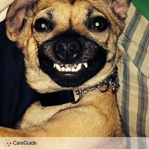 Pet Care Provider Edith Velasquez's Profile Picture