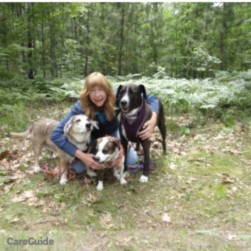 House Sitter Provider Sharon B's Profile Picture