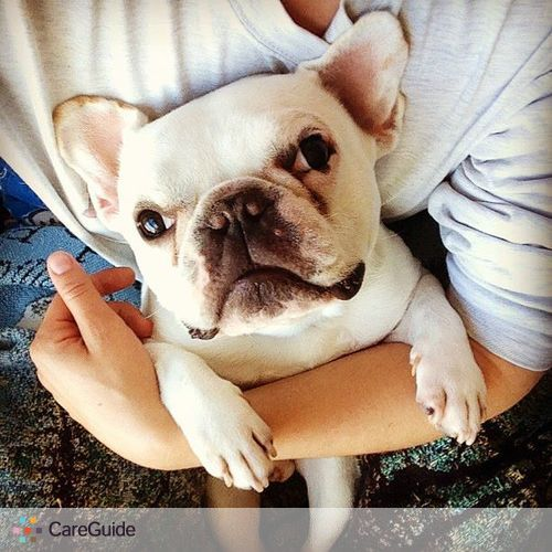 Pet Care Job Samantha Ames's Profile Picture