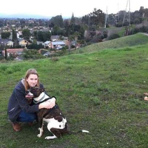 Pet Care Provider Julianne Pomarleanu's Profile Picture