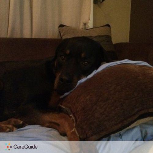 Pet Care Provider Rose B's Profile Picture