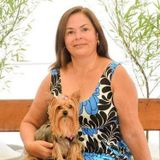 Excellent and responcible House/pet Sitter Available