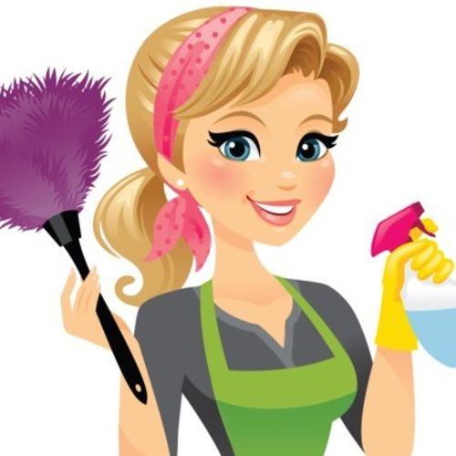 Housekeeper Provider Dana Moon Gallery Image 1